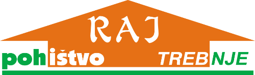 RAJ logo transparent
